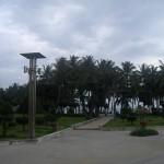 Edward Scissorhands in Nha Trang
