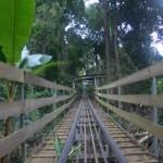 Adventures in Dantala Waterfall- Da Lat, Vietnam